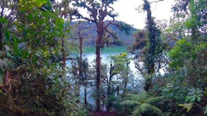 green-lagoon-1