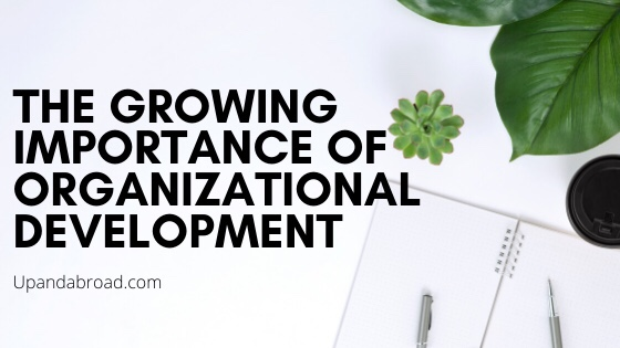 The Growing Importance Of Organizational Development in Today's Business World